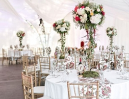 WEDDING Marquee hire img